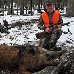 boar11412