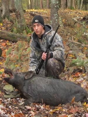 boar131017