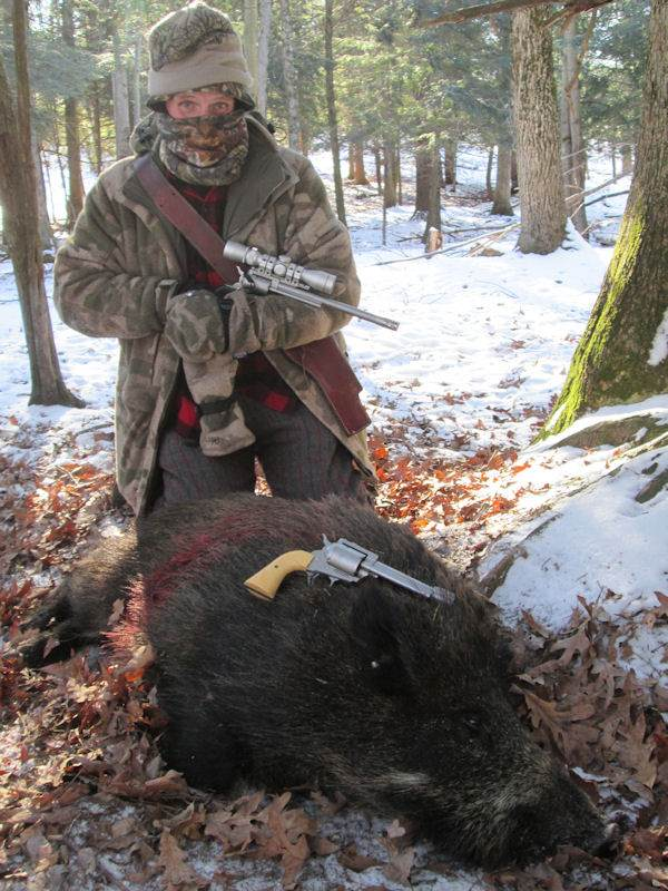 boar132014