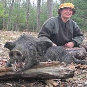 boar1516