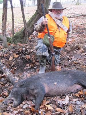 boar2115