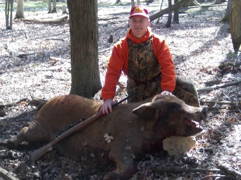 boar231514
