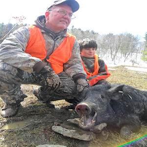 boar2412