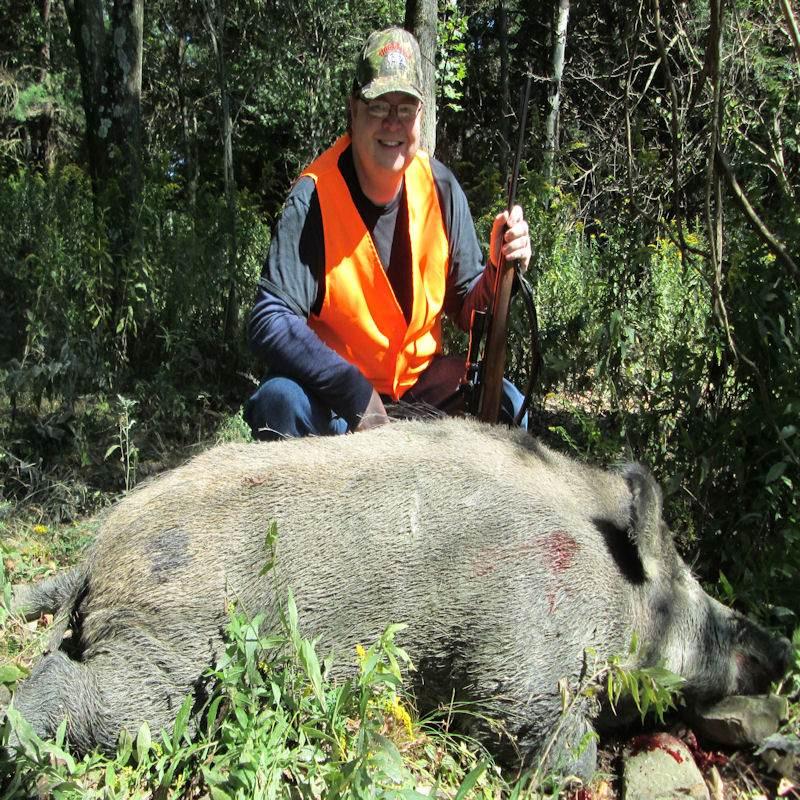 boar25927