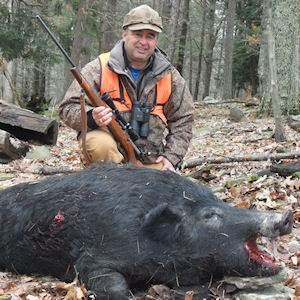 boar3412