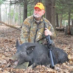 boar3516