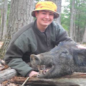 boar4516