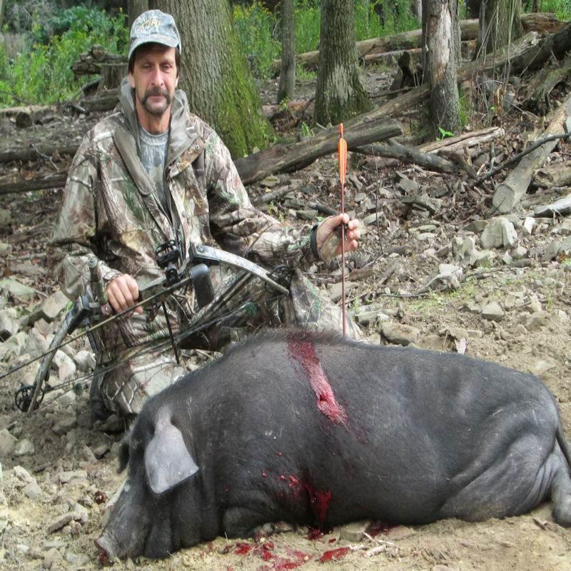 boar5927