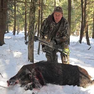 boar841