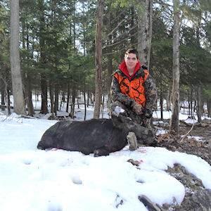 boar9412