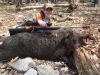 Wild Hog Hunting in PA