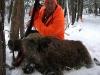 boar111227