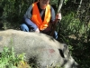 boar23927
