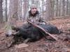 boar2441814