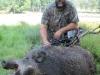 boar26927