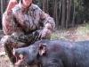 boar31017
