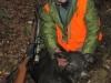 boar71017