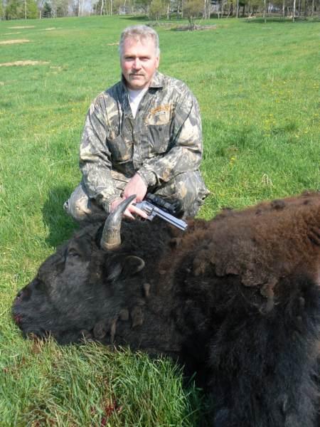 buffalo1bb