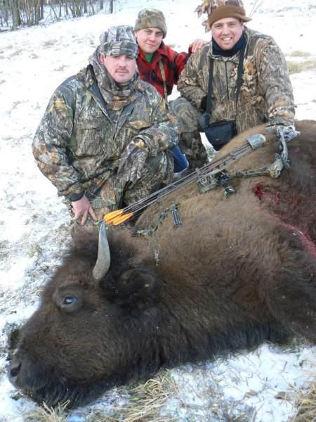 buffalo4bb