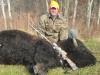 131buffalo1