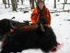 buffalo3bb