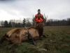 Guided Elk Hunts in Pennsylvania