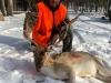 Fallow Deer Trophy Kill