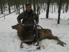 Red Stag Deer Hunting Trips