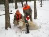 Trophy Ram Hunting in PA