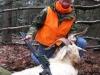 goat2115