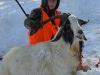 goat36