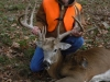 whitetail1bb