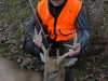 whitetail2bb