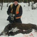 Boar Hunting in PA, East Coast Boar Hunting