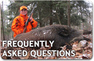 Guided Boar Hunting Trips