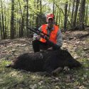 Guided Boar Hunting