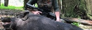 Hunters and Conservation