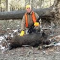 Boar Hunting Information
