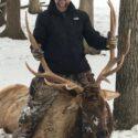 Elk vs Deer Hunting