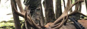 Elk Hunting in PA
