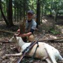 Fallow Deer Hunting