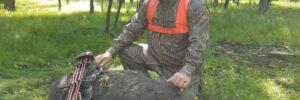 Wild Boar Meat