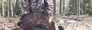 Hunting in Pennsylvania